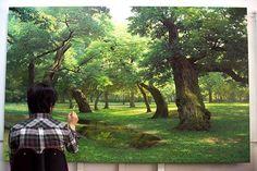 'Beautiful Nature Paintings by Korean Artist An Jung-Hwan  Find him at instagram : https://www.instagram.com/anjunghwan78/'