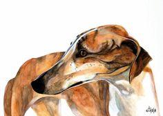 Art print of the Spanish Greyhound Zahara.