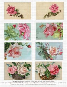 Attic Pink Roses Catherine Klein Collage by Victoriarosecottage, $3.00