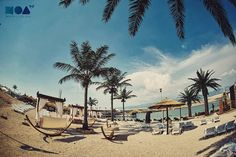 Who misses the #summer ? by noabeachclub More about Zrce an Novalja http://zrce.eu