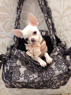 Adorable Chiot Cristal Beagle Chien Mignon Collier Vintage Strass Animal Bijoux