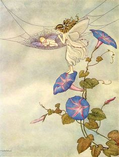 Ida Rentoul Outhwaite ~ Fairy Beauty Rocks a Babe ~ The Enchanted Forest ~ 1921