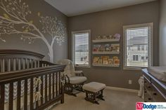 A beautiful nursery in brown, gray, and pastel yellow with floating shelving between the two windows on the far wall. A vinyl decal shaped like a tree is on the wall behind the crib and rocking glider, with small yellow song bird vinyls perched on several branches.
