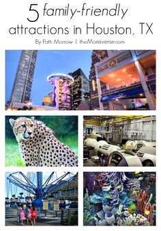Five family-friendly attractions in Houston, TX | The Momiverse | Article by Patti Morrow | Kemah Boardwalk, Houston Zoo, Bayou Place, Space Center Houston, Downtown Aquarium, CityPASS, #Houston, #travel