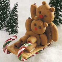 Sledding Teddies! Perfect for my mom and me!! @Bonnie Wellborn