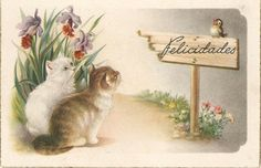 Kittens watching cute bird flowers Spanish by sharonfostervintage, $3.50