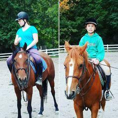 Horsey Lessons #horse #horses #horseoftheday #horsesofinstagram #instahorse #instagramhorses #instapet #petsofinstagram #petoftheday #instagrampets #equestrian #equestrianlife #horsebackriding #horseriding #horselessons #arabcross #hanovarian #arab