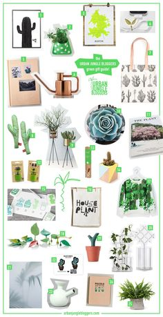Green Gift Guide for Plant Lovers