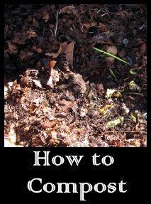 rhgs outdoor u0026 gardening blog revisiting composting
