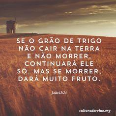 João 12:24
