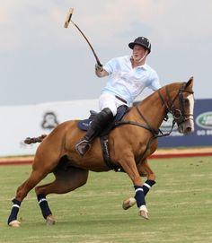 polo pony/prince harry