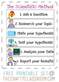 Free Scientific Method Printables for kids. Free science printables and resources. Science Inquiry, 1st Grade Science, Science Notes, Science Notebooks, High School Science, Elementary Science, Science Classroom, Teaching Science, Physical Science