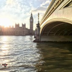 #tuesdayafternoon #WPH_26 #WPH_26_sceris #weeklyphotohunters #photohunt #londonsbest #londonphotography @ukpotd #photooftheday #riverthames #bigben #housesofparliament #westminsterbridge #palaceofwestminster #london #settingsun Photos from my travels