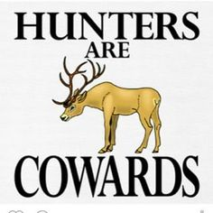 hunters are cowards - Google Search