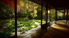enryaku-ji, otsu  延暦寺  大津市