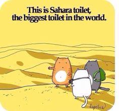 Here kitty, kitty, kitty!!