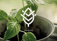 VQV Identity by Lisa Nemetz, via Behance  An organic food restaurant