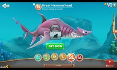 The largest hammerhead in the sea, Great hammerhead shark from hungry shark world.