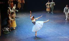#EifmanBallet - #photo #art #ballet ♥♥♥
