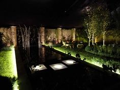 """""""Garden by Night"""" exhibit at the Hampton Court Flower Show 2011 -- a bit different for a flower show: a garden in a darkened tent, lit as a garden might be at night"""