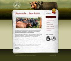 www.buenretirovergara.com - 2008