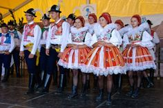 tradice jižní Moravy - Celebrations crop in South Moravia