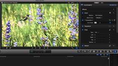 71 Best Final Cut Pro X images in 2012 | Final Cut Pro, Final exams