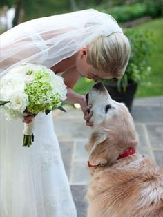 Dogs In Wedding I wish I could have this moment with my baby when my wedding day gets here. Dog Wedding, On Your Wedding Day, Wedding Pictures, Perfect Wedding, Wedding Engagement, Dream Wedding, Wedding Things, Rustic Wedding, Photos With Dog