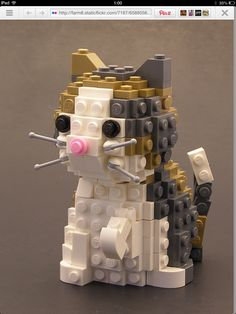 Lego cat  show Luca