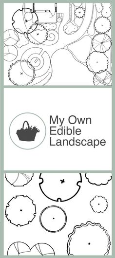 235 Best My Own Edible Landscape Edible Landscape Design Images