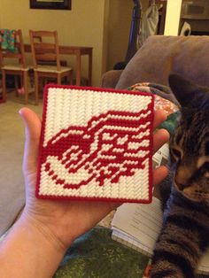 Made by me for a Detroit Red Wings Fan and my friend, plastic canvas and yarn coaster
