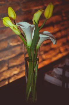 Decoração: Arranjo de tulipas amarelas com Copos de Leite brancos - Fotógrafa: Bárbara Alves - Local: Espaço Vila Jardim Osasco