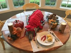 We had a pet costume contest at work....winner winner lobsta dinner!