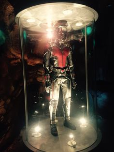 Ant man costume in Disney land