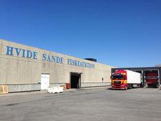Hvide Sande Fischauktionshalle #HvideSande #Fischauktion
