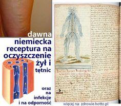 zdrowie-hotto-pl-dawna-niemiecka-receptura-mikstura-na-oczyszczenie-zyl-tetnic-infekcje-odpornosc