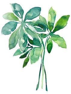 Arboricola study - tropical leaf art, watercolor painting, beach art, modern watercolor art, beach house, home decor, fine art #watercolorarts