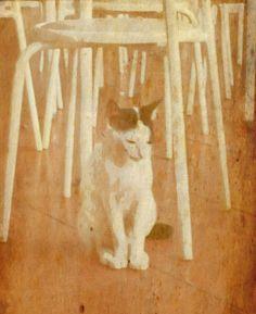 Don't be sad cat :-(