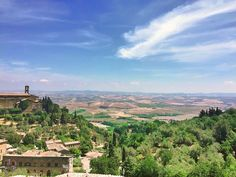Picture-perfect Italian countryside in Montalcino, Italy.