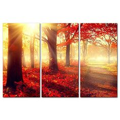 3 Pieces Modern Canvas Painting Wall Art The Picture For Home Decoration Autumn Fall Scene Beautiful Maple Trees And Leaves Foggy Forest In Sunny Rays Landscape Forest Print On Canvas Giclee Artwork For Wall Decor My Easy Art http://www.amazon.com/dp/B011JG80EG/ref=cm_sw_r_pi_dp_kqnSwb1DZJ72K