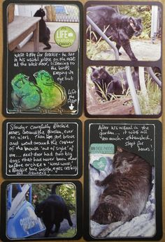 A Teacup of Scrapisms: Cat Lovers Hop Day 4