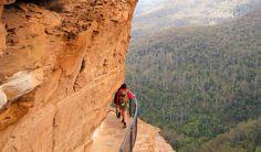 National Pass walk, Blue Mountains National Park. Photo: Craig Marshall Copyright:NSW Government