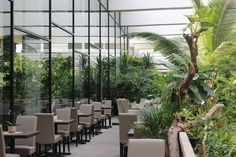 Berlin, Plants, Fine Dining, Deli Food, Exotic, Plant, Planets