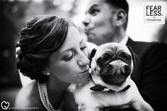 Wedding Photography Select curate the best wedding photos from the best wedding photographers around the world. These Excellence Awarded images are a small selection of cute and hilarious animals misbehaving during the wedding day. Wedding Photography Styles, Best Wedding Photographers, Love Pet, Photojournalism, Budapest, Funny Animals, French Bulldog, Our Wedding, Cool Photos
