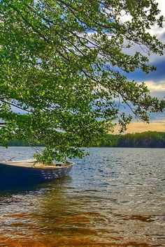 Sometimes you gotta let the boat sail herself. #quote #boat #canoe #lake #jezioro #polska #poland Canoe, Poland, Sailing, Boat, Quote, River, Let It Be, Photos, Outdoor
