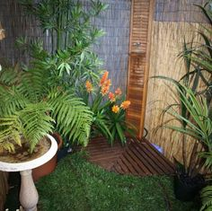 outside shower | Wooden Outdoor Shower Plans With Bamboo Fence