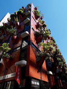 Organic Building - Japan: Garden Walls on an Organic Building in Japan