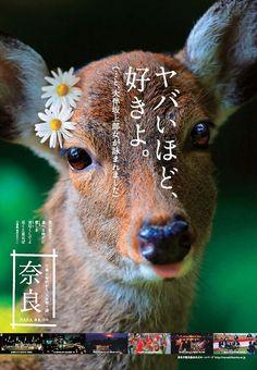 広告 Poster Layout, Dm Poster, Poster Prints, Japan Design, Japanese Poster, Japanese Prints, Pop Design, Design Art, Design Ideas