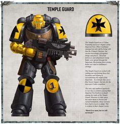 Warhammer 40k Codex, Warhammer Paint, Warhammer Models, Warhammer 40k Miniatures, Space Marine, Sci Fi Miniatures, Marine Colors, Imperial Fist, Video X