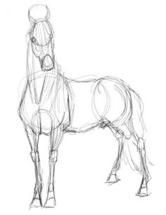 Horse drawing idea